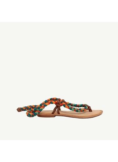 Yargıcı Sandalet Renkli